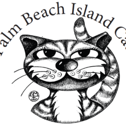 Palm Beach Island Cats